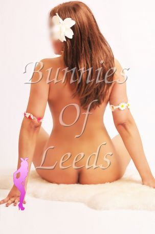 Massage Bunnies Of Leeds